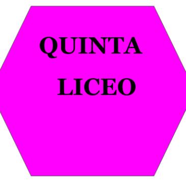 Classi QUINTE LICEO